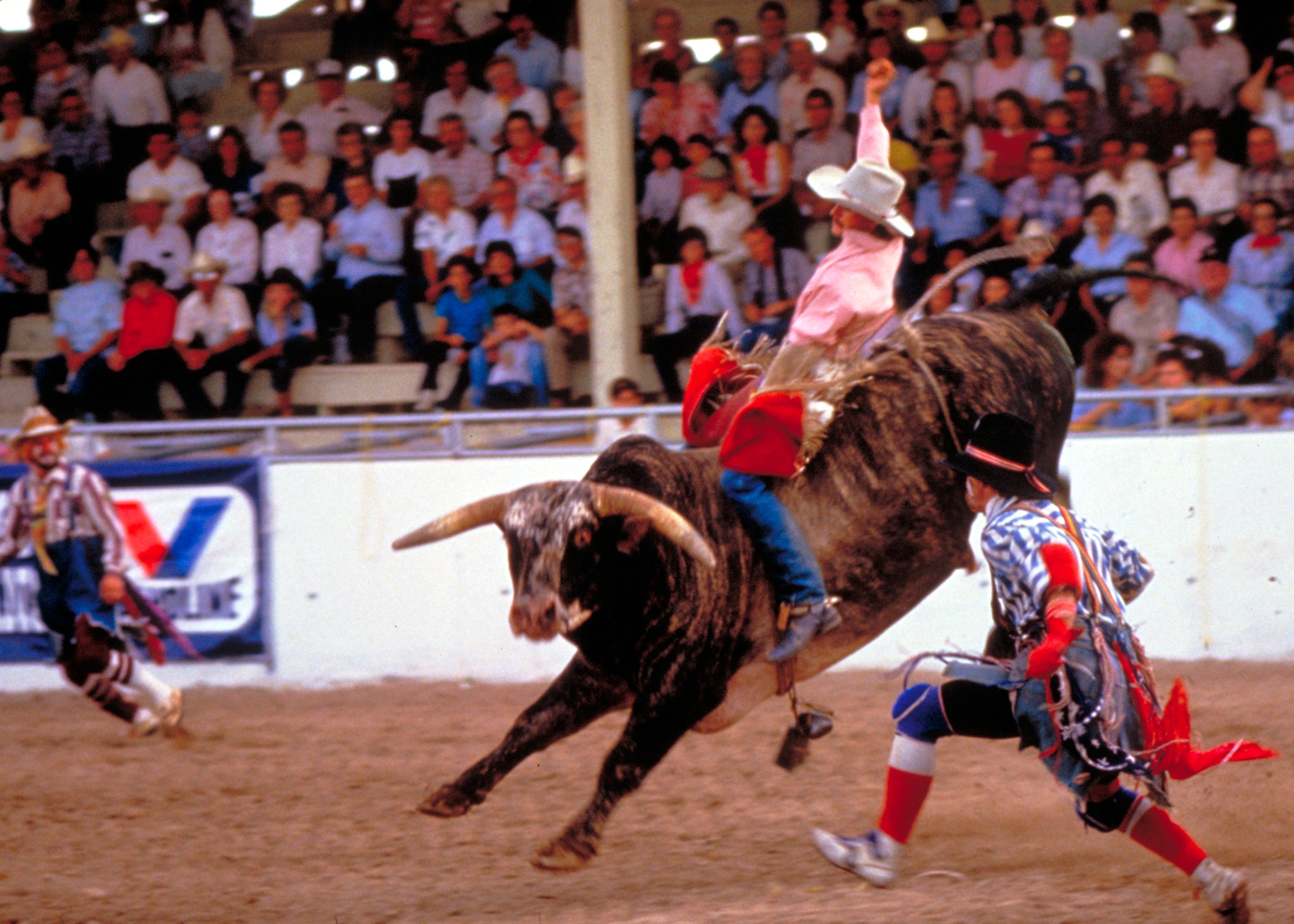 San-Antonio-Stock-Show-and-Rodeo-SACVB_Tags_Rodeo_Western